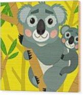 Koala Bears Wood Print