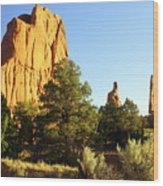 Kodachrome Basin I Wood Print