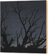 Kodachrome Basin Night Sky 2963 Wood Print