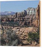 Kodachrome Basin Panorama Wood Print