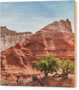 Kodachrome Park Colorful Desert Beauty In Spring. Wood Print