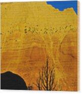 Kodachrome Wood Print