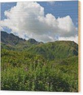 Kodiak Greenery Wood Print