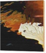 Koi Fin Abstract Wood Print