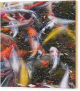 Koi Fish Pond Abstract Wood Print