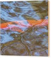 Koi Glimpses Wood Print
