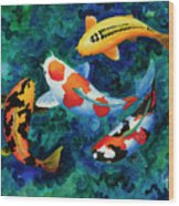 Koi Group Wood Print