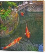 Koi Pond  Wood Print