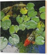 Koi With Lily Pads D Wood Print