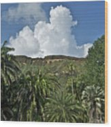 Koko Crater Trail Wood Print