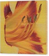 Kokomo Sunset 05 - Daylily Wood Print