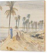 Kom El Amhr, 1 Pm, 4 January 1867 Wood Print