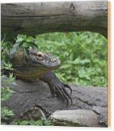 Komodo Dragon Climbing Over A Fallen Tree Wood Print