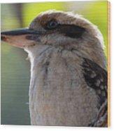 Kookaburra On A Branch Wood Print