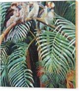 Kookaburra Perch Wood Print