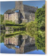 Kost Castle Wood Print