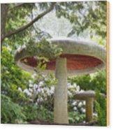 Krider Garden Mushroom Wood Print