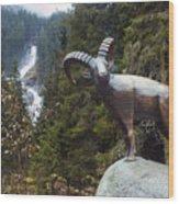 Krimml Waterfall Wood Print