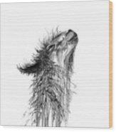 Kristin Wood Print