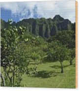 Kualoa Orchard Wood Print