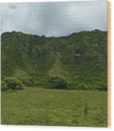 Kualoa Panorama Wood Print