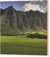 Kualoa Ranch 5 Wood Print