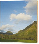 Kualoa Ranch Wood Print by Dana Edmunds - Printscapes