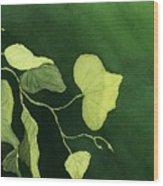 Kudzu Wood Print