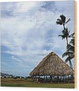 Kukulu Hale Kahului Maui Hawaii Panorama Wood Print