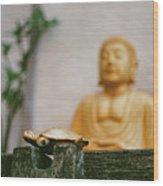 Kura-kura Wood Print