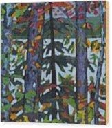 Kushog Colours Wood Print