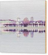 Kuskovo Estate, Moscow Wood Print