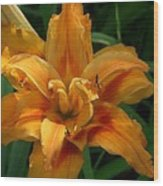 Kwanzaa Lily Watercolor Wood Print