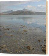 Kyle Of Tongue Scotland Wood Print