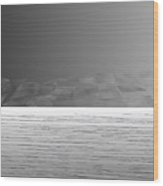 L21-24 Wood Print