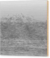 L22-21 Wood Print