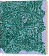 L9-104-0-183-160-193-192-248-3x3-1500x1500 Wood Print