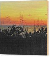 la Casita Playa Hermosa Puntarenas Costa Rica - Sunset A Panorama Wood Print