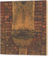 La Fontanella Di Pietra Wood Print