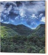 La India Dormida Wood Print