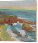 La Jolla Cove 019 Wood Print