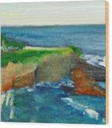 La Jolla Cove 021 Wood Print