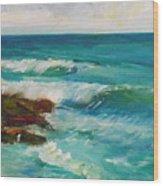 La Jolla Cove 027 Wood Print