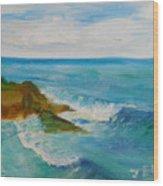 La Jolla Cove 029 Wood Print