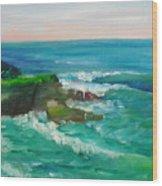 La Jolla Cove 032 Wood Print