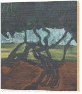 La Jolla II Wood Print