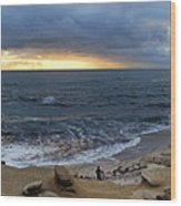 La Jolla Shores Beach Panorama Wood Print