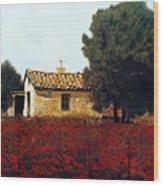 La Masseria Tra I Papaveri Wood Print