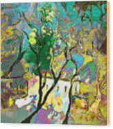La Provence 16 Wood Print