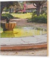 la Purisima Fountain Wood Print